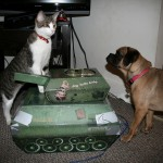 ivan_kitty_tank_maddy_puggle