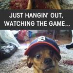 valverde_puggle_funny comic